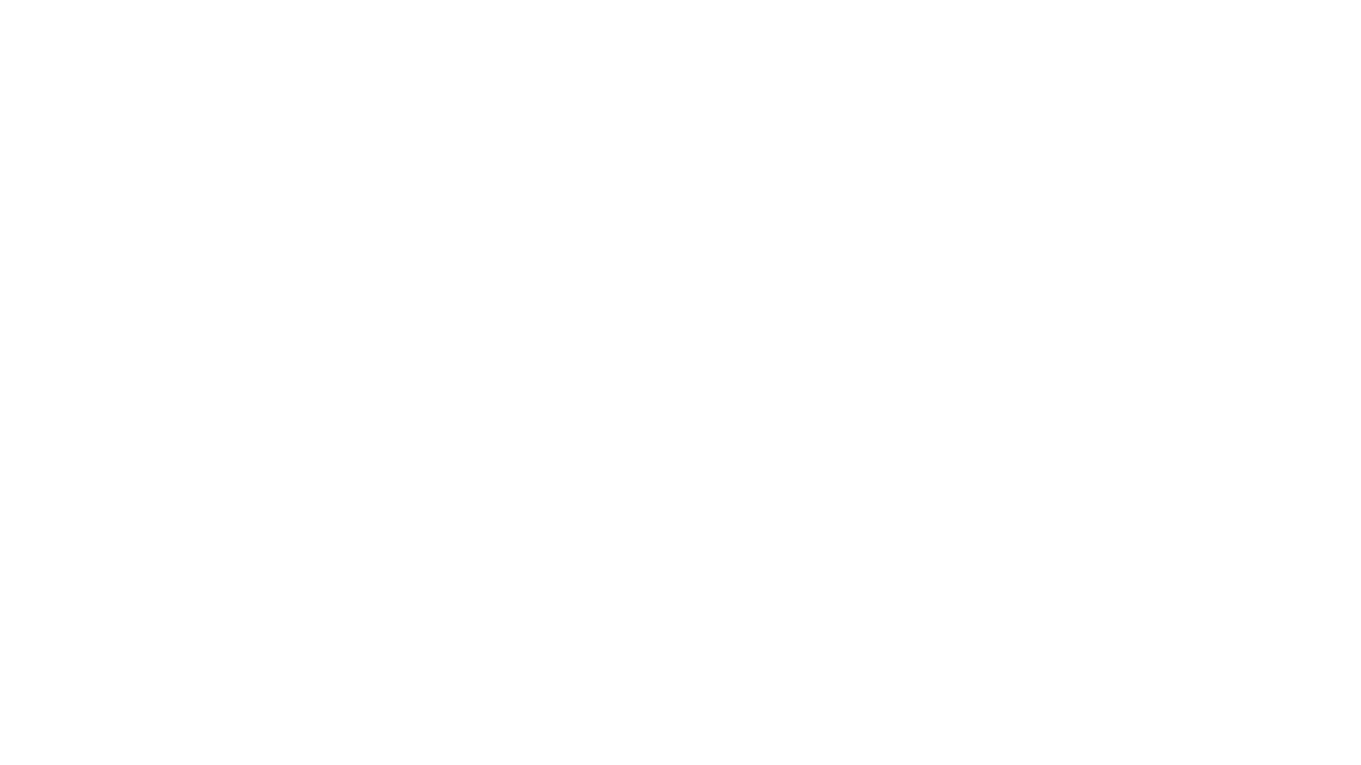 Brainscout